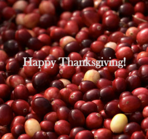 "a photo of raw cranberries with the title, ""Happy Thanksgiving."""