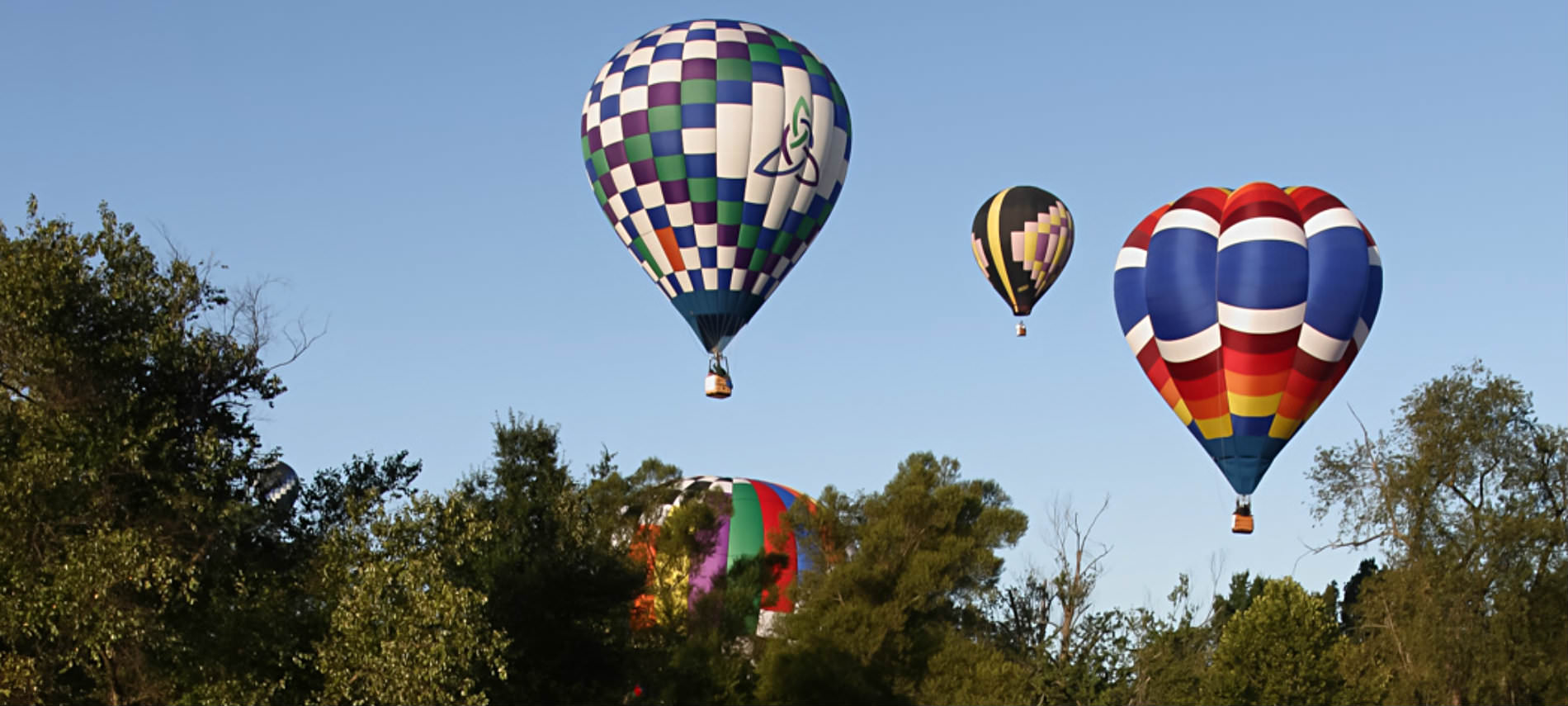Multi-colored checkered and striped hot air ballons flying over tree, blue sky.