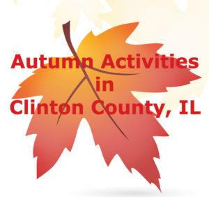 leaf-in-fall