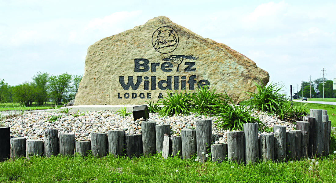 Large stone attraction marker with carves lion with sunglass and name Bretz Wildlife Lodge and Winery, gravel bank by cut off posts.