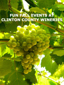 GREEN GRAPES ON THE VINE WITH TITLE: FUN FALL EVENTS AT CLINTON COUNTY WINERIES
